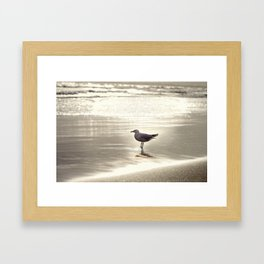 By the Sparkling Sea Framed Art Print
