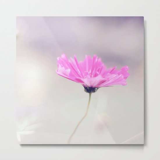 Cotton candy cosmo Metal Print