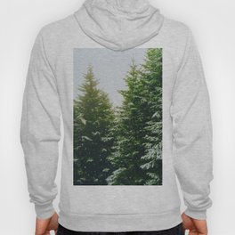 Winter Pine Tree Forest (Color) Hoody