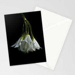 Wild Onion Stationery Cards