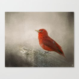 Song of the Summer Tanager 1 - Birds Canvas Print