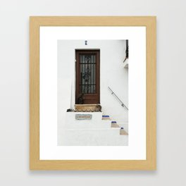 Two cats on White Stairs Framed Art Print