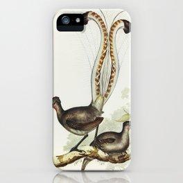 Lyre Bird (Menura superba) illustrated by Elizabeth Gould (1804–1841) for John Gould's (1804-1881) B iPhone Case