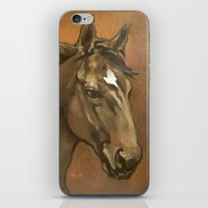 Sound Reason - Thoroughbred Stallion iPhone Skin