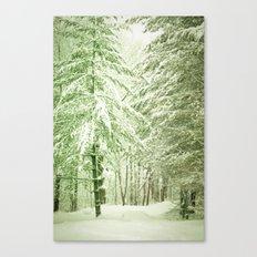Winter Pine Trees Canvas Print