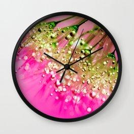 Pink Dandelion Seed Photographic Print Wall Clock