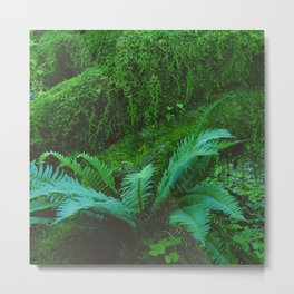 Mystical Green Fern Leaves in the Enchanted Forest Metal Print