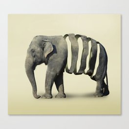 Ribbon Elephant Canvas Print