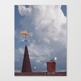 Seagulls on the roof Canvas Print