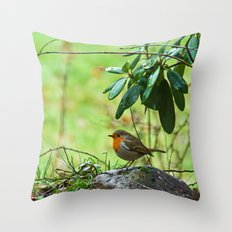Robin in the spring Throw Pillow