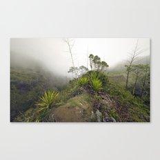 Mafate Canvas Print