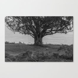 The Bunker Tree #15 (For Nora) Canvas Print