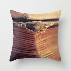 Reading Corner Throw Pillow