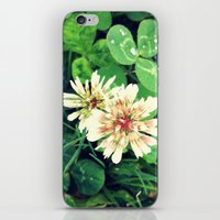clover iPhone & iPod Skins featuring Clover by ADH Graphic Design