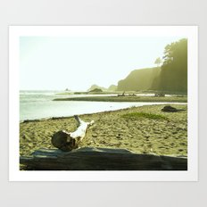 Navaro Beach IX Art Print