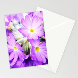 Primula denticulata in bloom Stationery Cards