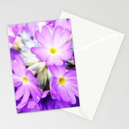 Primula denticulata in bloom Stationery Cards
