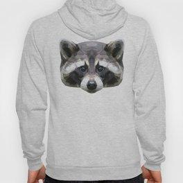 Raccoon // Mint Hoody