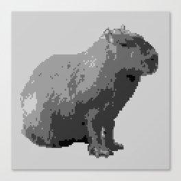 Capybara #2 Canvas Print