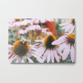Little Honey Metal Print