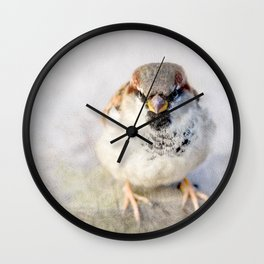 Don't Mess With Sparrows Wall Clock