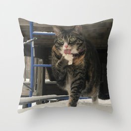 Fat Cat in the Snow Throw Pillow