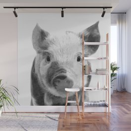 Black and white pig portrait Wall Mural