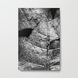 aging Metal Print