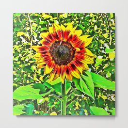 To Be A Sunflower Metal Print