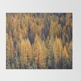 Autumn Tamarack Pine Trees Throw Blanket