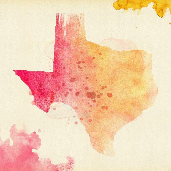 TEXAS IS THE REASON Comforters