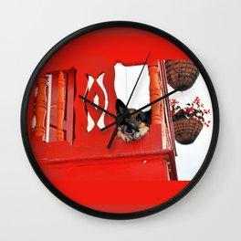 Sad Dog In Red Balcony. Wall Clock
