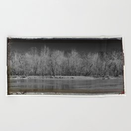Forest from the Trees Beach Towel
