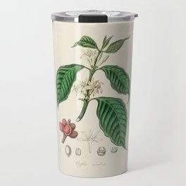Coffee Bean Antique Botanical Illustration Travel Mug