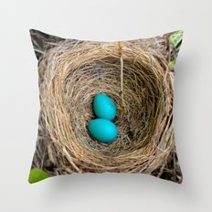 Two Little Robin's Eggs Throw Pillow