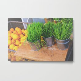 Wheat Grass & Oranges Metal Print