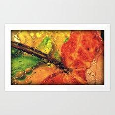 Wet Red Maple Art Print