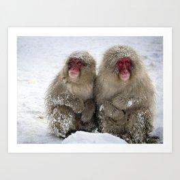 two snow monkeys Art Print