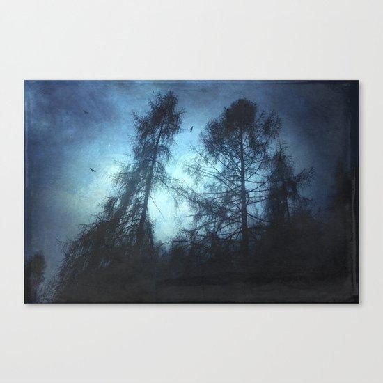 dark knights Canvas Print