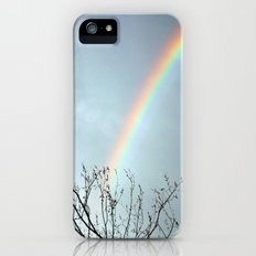 Rainbow iPhone (5, 5s) Slim Case
