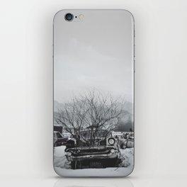 Car and Crow iPhone Skin