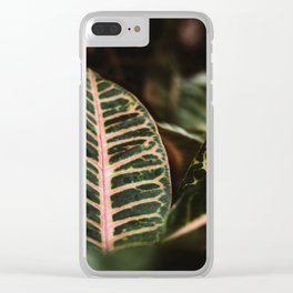 Botanical Conservatory Clear iPhone Case