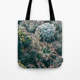 Mornings In The Succulent Garden #1 Tote Bag