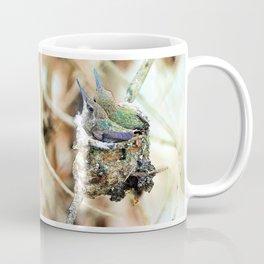 The Hummingbird Nest. © J&S Montague. Coffee Mug