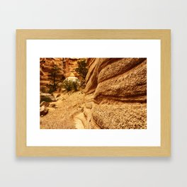 KASHA 4 Framed Art Print