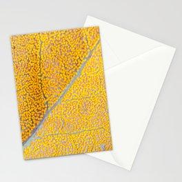 Orange Leaf Veins Stationery Cards