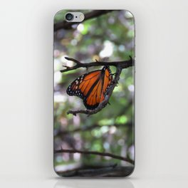 Monarch in the woods iPhone Skin