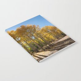 Autumn Blaze outside of Crested Butte, Colorado for #Society6 Notebook