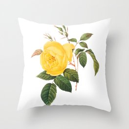 Vintage Yellow Rose [01] Throw Pillow