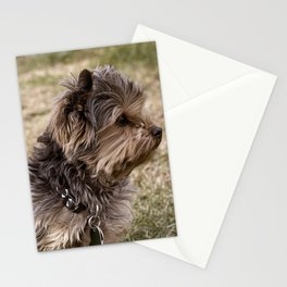 Patient Pup Stationery Cards